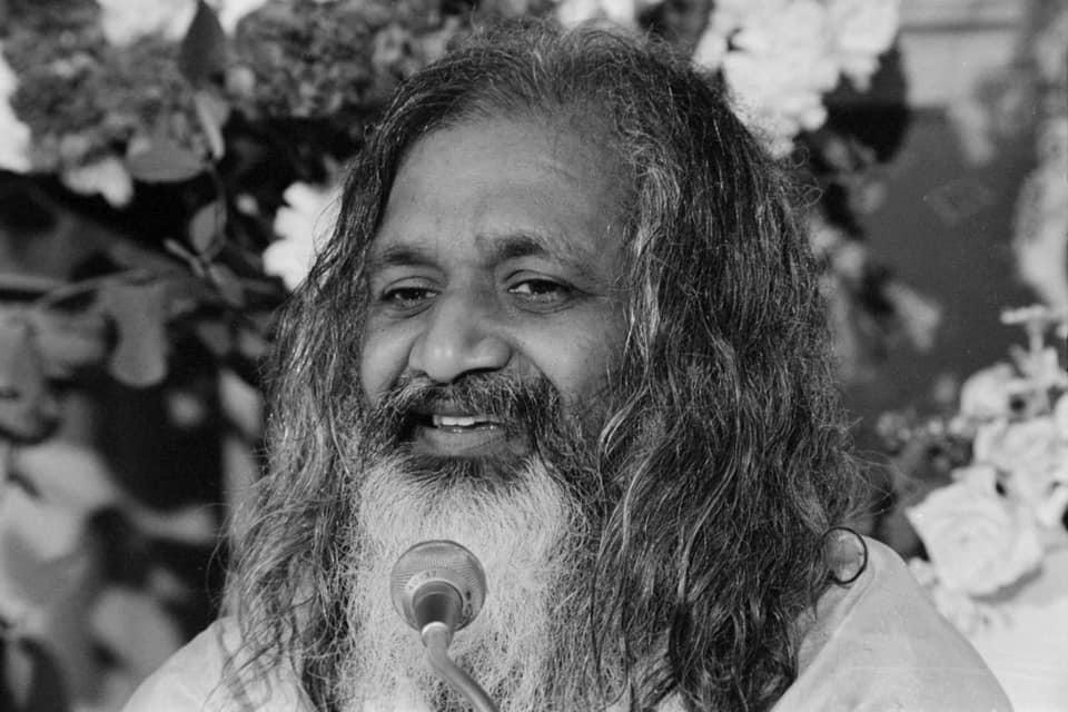 De ce predau Meditație Transcendentală