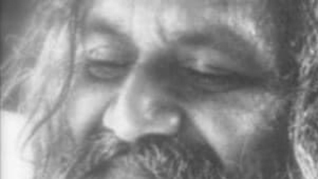 Delicatul impuls al iubirii - Maharishi Mahesh Yogi